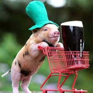 pork and Guinness