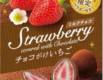 コンビニで人気のデザートチョコが更に豪華に!「チョコがけ苺ミルクチョコパウダー仕立て」登場!