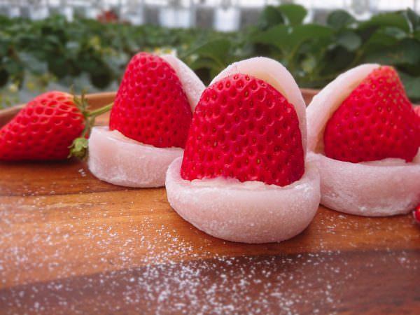 自家製こだわり いちご使用の「いちご大福」など新商品が登場! 愛知県西尾市の農園直営カフェ「King Farm Cafe」で提供