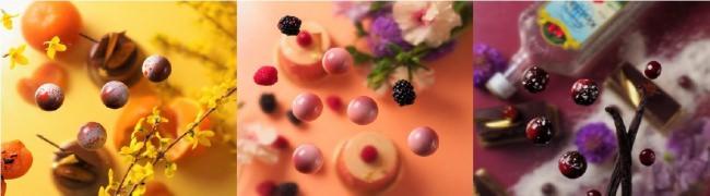 ケーキの味わいを一粒に表現したボンボンショコラがリニューアル販売! ホワイトデーギフトにも!カラフルで宝石のようなショコラが30種類以上!  『ボンボンショコラアソート』本格販売開始