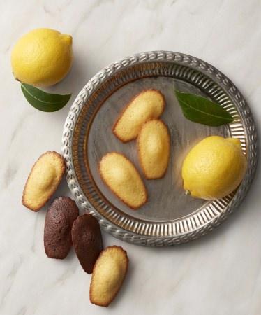 ベルギー王室御用達チョコレートブランド「ヴィタメール」 ロイヤル・マドレーヌをリニューアルします。