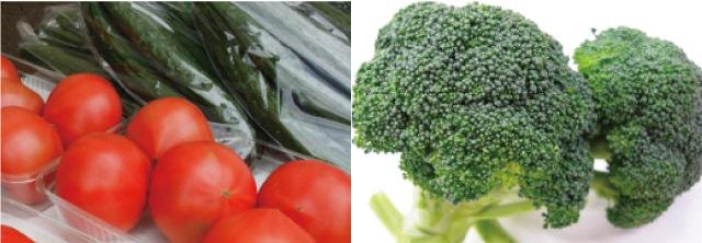 旬の春野菜を販売!JA全農にいがた「マルシェブース」出店のお知らせ