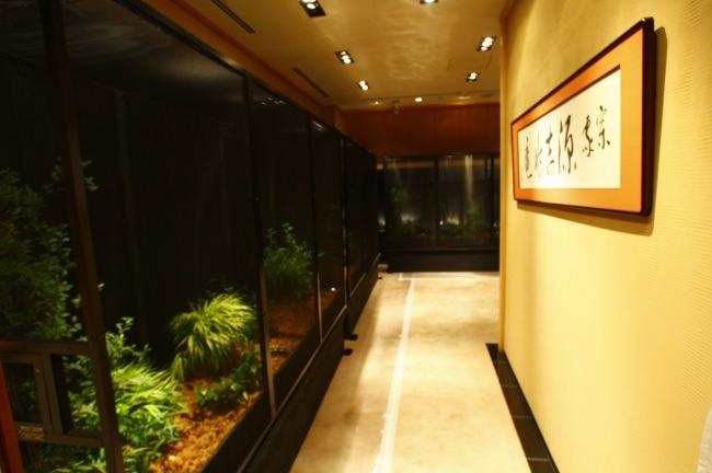 約600匹のホタルが銀座で楽しめる!入場無料の第16回「源氏ボタル観賞会」開催決定
