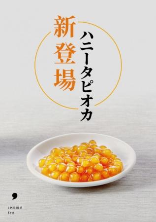 茶葉にこだわったティースタンド「comma tea(コンマティー)」からはちみつにじっくり漬け込んだハニータピオカが新登場!