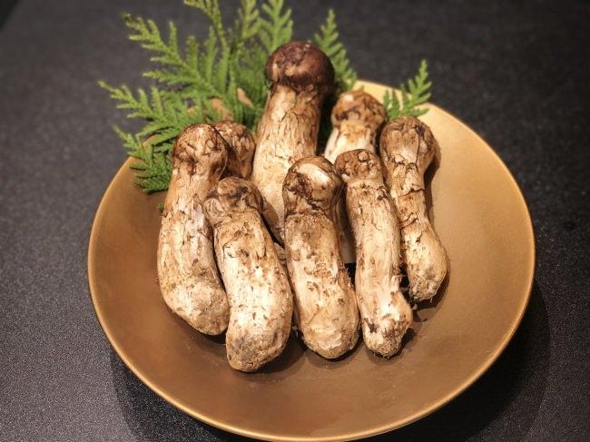 焼肉TENから秋の味覚の王様「松茸」を使用した贅沢コースがスタート!最高級焼肉と松茸のマリアージュに悶絶