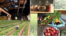 宮城県白石市で築約400年の古民家をリノベ! 復興庁クラウドファンディング支援事業を活用し、地元産有機野菜を使った伝統料理食堂と交流スペースの開設をします!