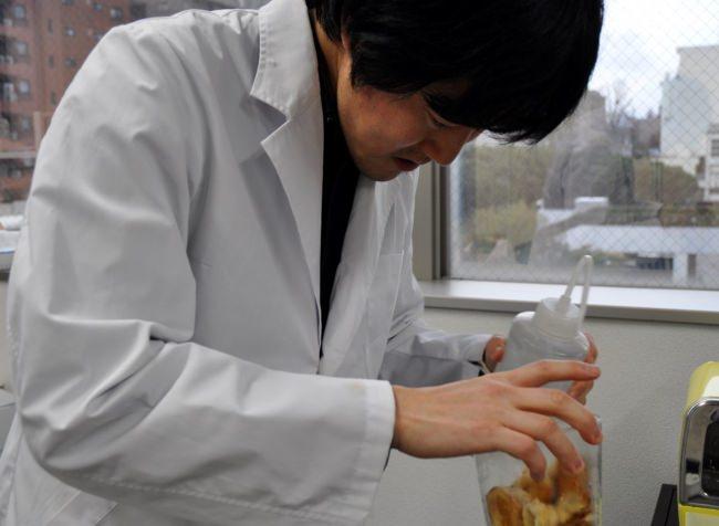 鈴木氏による実験中の写真