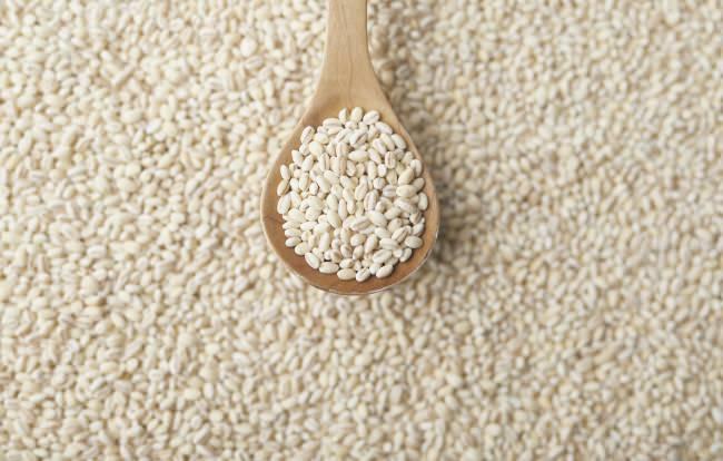 """30代の49.3%が""""もち麦ごはん""""はおいしい!と実感。食物繊維がごぼうの2倍の「もち麦」、主食で食物繊維宣言!"""