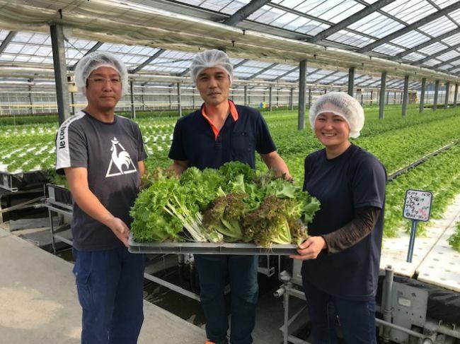 土を使わない「はだのふぁーむ」の水耕栽培で作られた安心・安全かつ新鮮な野菜を使ったバーニャカウダ
