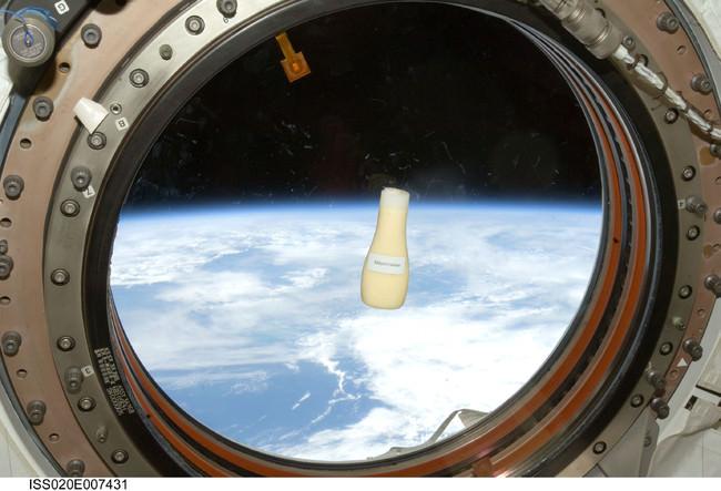 2009年、若田光一宇宙飛行士が 国際宇宙ステーションにて撮影 (C)JAXA/NASA