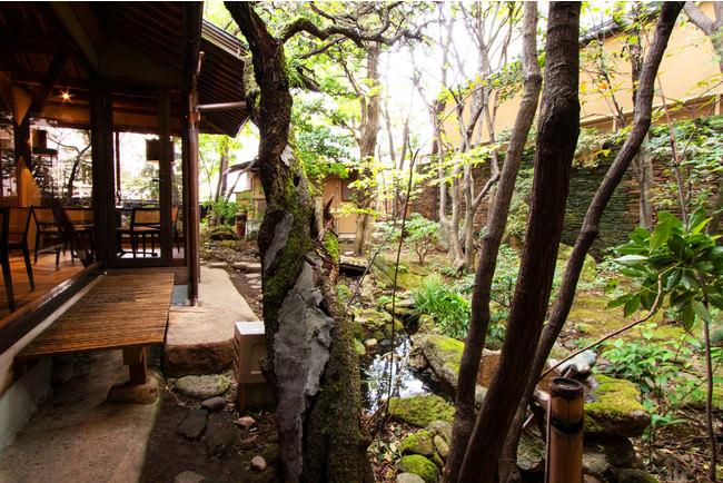 茶室のある日本庭園