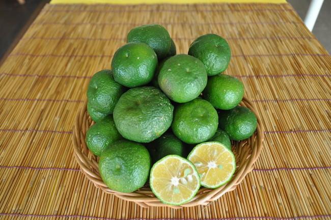 沖縄在来種柑橘のカーブチー