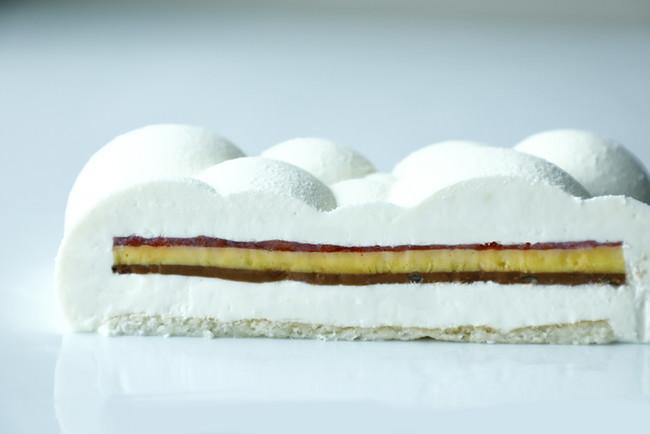 2種ケーキ断面