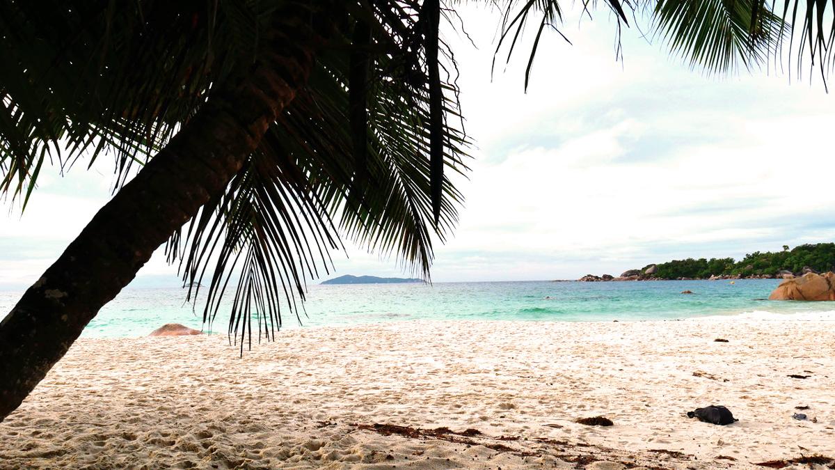 Traumstrand auf der Seychelleninsel Praslin. Foto JW