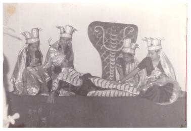 gkdave_cultural_programes (80)