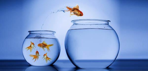 SAÚDE CRÔNICA: Mudar pode ser bom, mas é preciso coragem