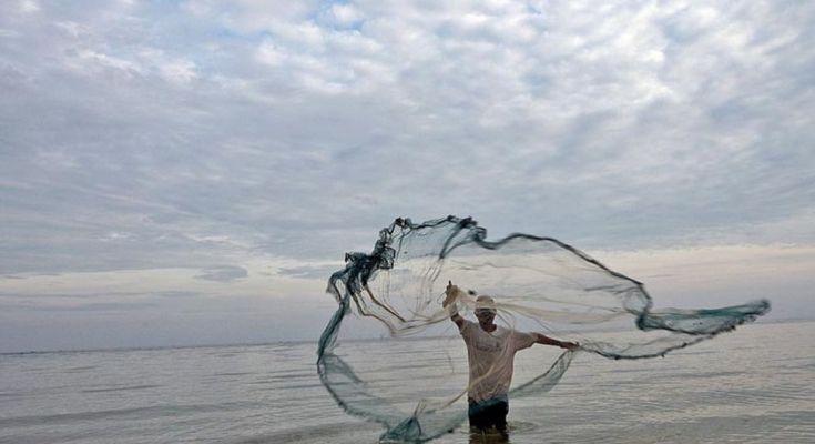 Pescadores artesanais pedem para serem incluídos no pagamento de auxílio emergencial