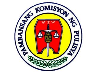 NAPOLCOM Logo