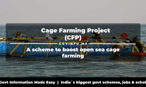 Cage Farming Project