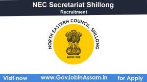 NEC Secretariat Shillong Recruitment 2020