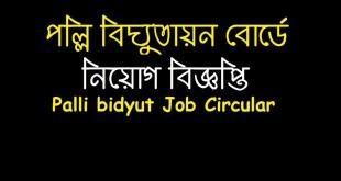 Palli Bidyut Job Circular