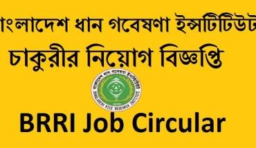 BRRI Job Circular