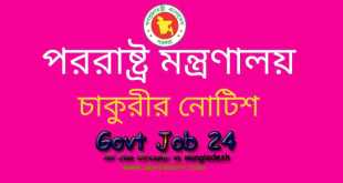 Ministry of foreign affairs administrative officer