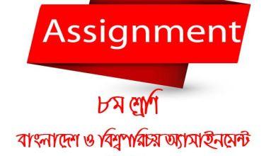 BGS assignment Class 8