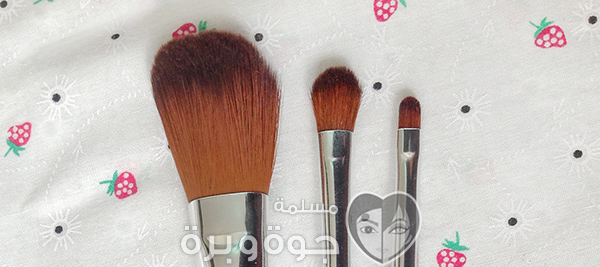 the body shop brushes0