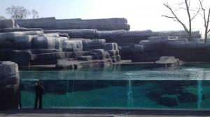 """Dernières lessives sur la vitre du bassin des otaries, """"en Patagonie"""""""