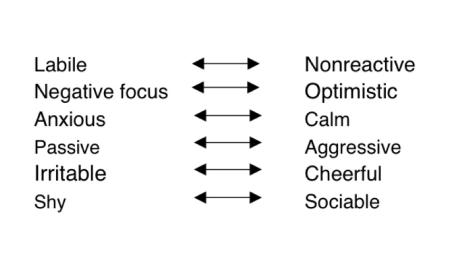 core emotional needs schema model