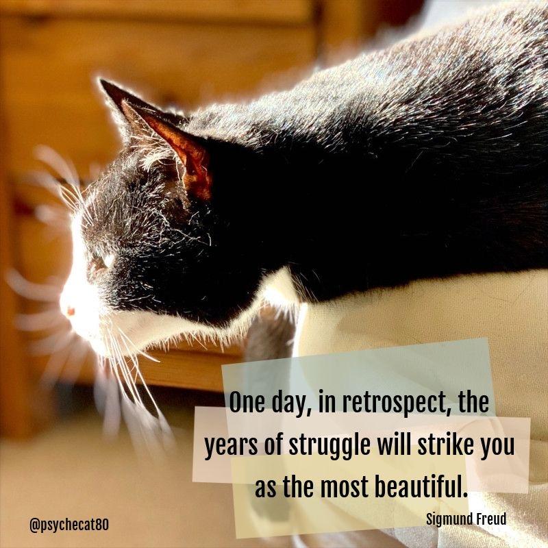 Therapy quote sigmund freud struggles