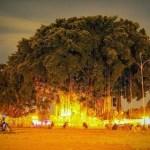 Traveling Low Budget di Yogyakarta