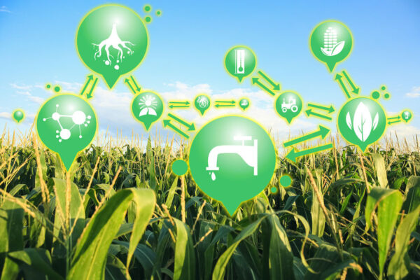 IOT, GPS. agriculture working digitally smart