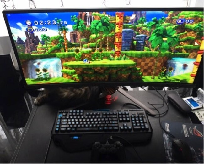 ASUS PG348Q Monitor Color Example