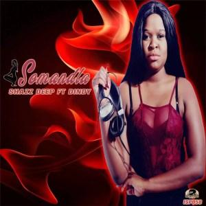 Shazz Deep ft. Dindy - Somandla