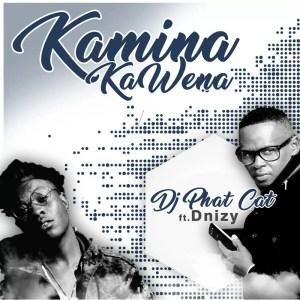 DJ Phat Cat Ft. Dnizy - Kamina Kawena