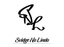 DjSvidge no Liindo x Abo - Fearless Options