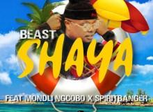BEAST - Shaya (feat. Mondli Ngcobo & Spiritbanger)