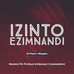 Dj Floyd & WayPee - Izinto Ezimnandi (feat. Manana & Maceeya)
