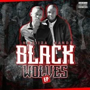 Nwaiiza Nande - Black Wolves EP