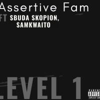 Assertive Fam - Level 1 (feat. Sbuda Skopion & Samkwaito)