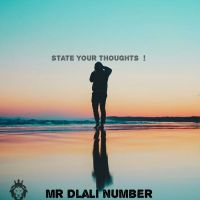 Mr Dlali Number - State Your Thoughts