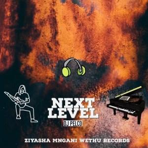 Dj Pelco - Next Level