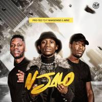 Pro Tee - Njalo (feat. Manqonqo & Airic)