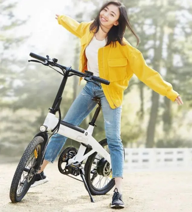 HIMO C20 Electric Bike