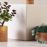 Eco Friendly Cork Home and Lifestyle Products
