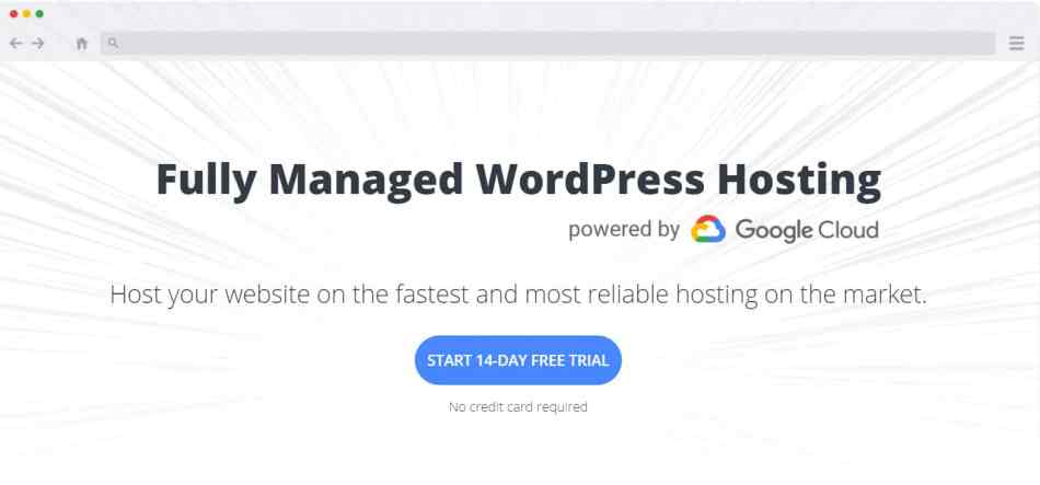 10Web WordPress Hosting
