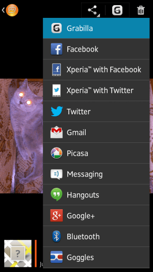 You can share images from standard Android context menu
