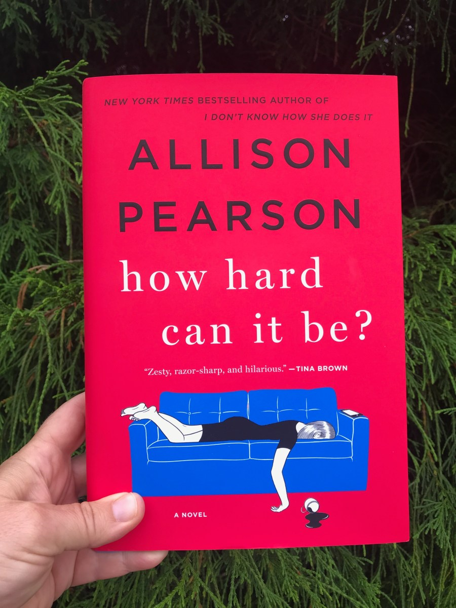 Ladies, Grab This BOOK and READ IT - Allison Pearson's how hard can it be?